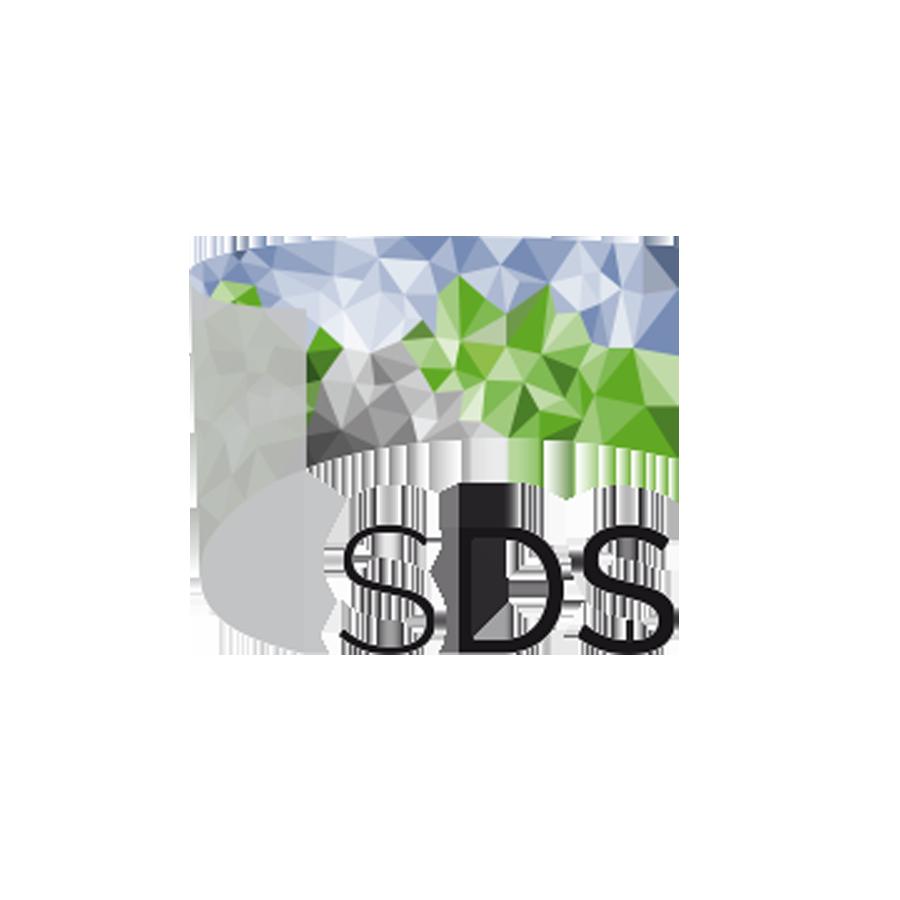 cogniBIT at virtual Symposium Driving Simulation 2020